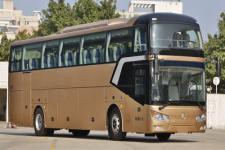 金旅牌XML6122J55Y1型客车图片
