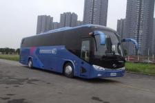 11米|24-63座金龙客车(XMQ6113AYN5D)