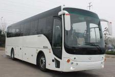 飞燕牌SDL6121EVL型纯电动旅游客车图片