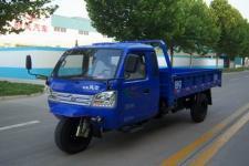 时风牌7YPJZ-17100PA2型三轮汽车图片