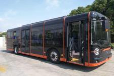 10.7米|24-35座扬子江纯电动城市客车(WG6110BEVHR10)