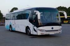 11米|24-53座紫象纯电动客车(HQK6118BEV1)