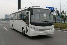 10.1米|24-38座野马纯电动客车(SQJ6100S1BEV)