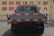 欧铃牌ZB1034BSD0V型两用燃料载货汽车图片