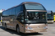 11米|24-53座金旅客车(XML6112J35Y1)