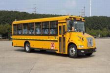 10米|24-56座东风小学生专用校车(DFH6100B1)