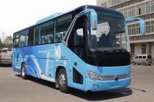 11.3米|24-53座宇通纯电动客车(ZK6119BEVQY51)