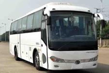 11米|24-50座江西客车(JXK6111CQ55N)