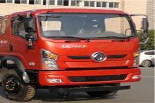 东风牌EQ1180GD5D1型载货汽车图片
