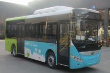 8.1米|14-24座宇通纯电动城市客车(ZK6805BEVG25A)