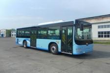 10.5米|19-40座黄海城市客车(DD6109B50N)