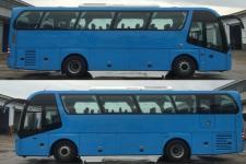 青年牌JNP6108V1型豪华客车图片2