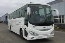 11米|24-46座中植汽车纯电动客车(CDL6110LRBEV1)