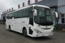 11米|24-46座中植汽车纯电动客车(CDL6110LRBEV2)