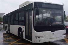 12米|22-38座中国中车纯电动城市客车(CSR6125GLEV1)