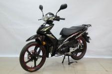 大阳DY110-28M型两轮摩托车