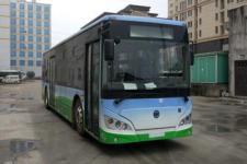 10.5米|17-40座紫象纯电动城市客车(HQK6109BEVB10)