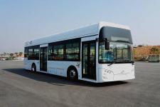 12米|19-34座飞驰燃料电池低入口城市客车(FSQ6120FCEVG)
