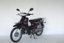 大阳DY110-D型两轮摩托车