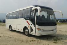 8.9米|24-41座金龙客车(XMQ6898AYD5D)