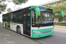 10.5米安凯城市客车