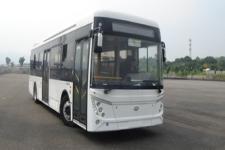 10.7米|25-39座广客纯电动城市客车(GTZ6119BEVB4)