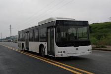 12米|23-44座中国中车纯电动城市客车(TEG6129BEV10)