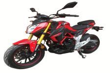 隆鑫牌LX175-10型两轮摩托车