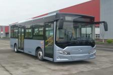 8.1米|16-31座通工纯电动城市客车(TG6801CBEV1)