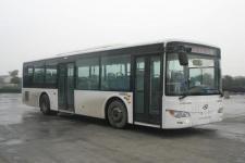 10.5米|19-42座金龙城市客车(XMQ6106BGN5)