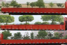 东风牌EQ1050S8BDC型载货汽车图片