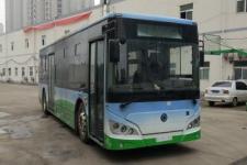 10.5米|17-40座紫象纯电动城市客车(HQK6109BEVB12)