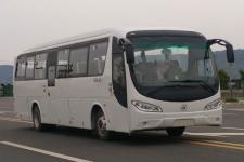 10.5米野马纯电动客车