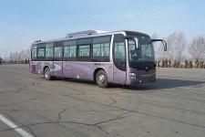 11.9米|24-56座黄海客车(DD6129K65N)