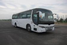 10.5米|24-48座黄海客车(DD6109C71)