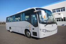 8.5米|23-38座黄海客车(DD6857C10)