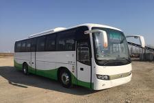 10.5米|24-48座象纯电动客车(SXC6105CBEV)