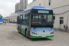 8.1米 12-29座紫象纯电动城市客车(HQK6819BEVB10)