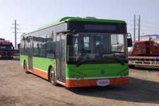 10.5米 17-40座紫象纯电动城市客车(HQK6109BEVB19)