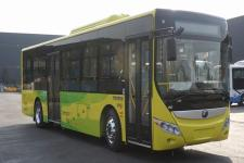 10.5米|20-39座宇通纯电动城市客车(ZK6105BEVG56)