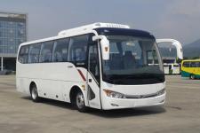 8米|24-34座金龙客车(XMQ6802AYD5D)