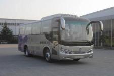 8米|24-36座申龙客车(SLK6803ALD5)