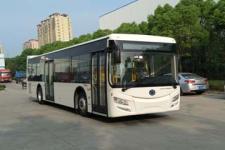 11.5米紫象城市客车