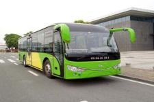 10.2米|25-44座安凯客车(HFF6102KDE5)