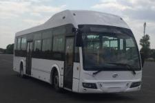 12米|30-42座湛龙纯电动城市客车(YYC6128GBEV)