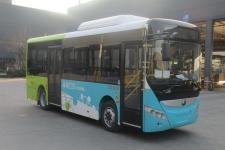 8.1米宇通纯电动城市客车
