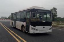 8.1米|14-29座紫象纯电动城市客车(HQK6819BEVB18)