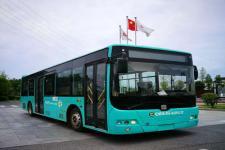 10.5米|19-40座中国中车纯电动城市客车(TEG6106BEV47)