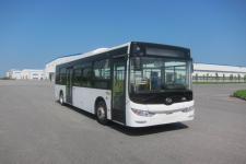 10米|18-31座黄海纯电动城市客车(DD6100EV4)