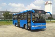 8.1米|15-31座安凯城市客车(HFF6810GDE5B)